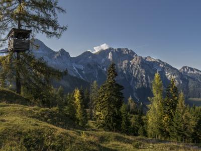 Hochsitz, Landschaft